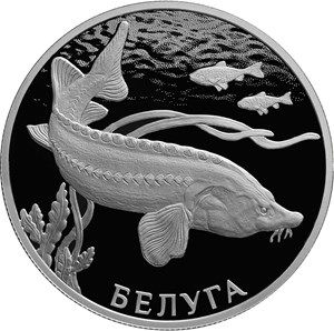 Серебряная монета «Белуга» — 2 рубля - реверс