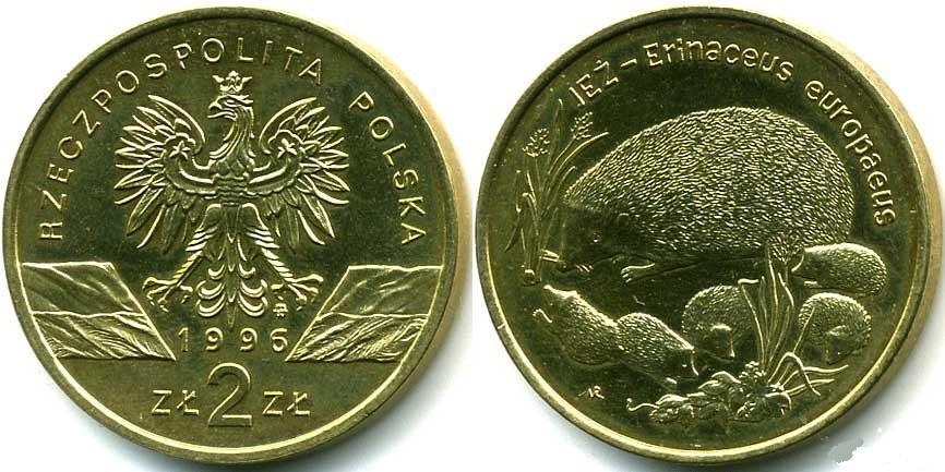 Юбилейная монета Польши посвящена животному миру - Ежу